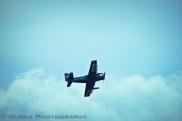 War Birds-17